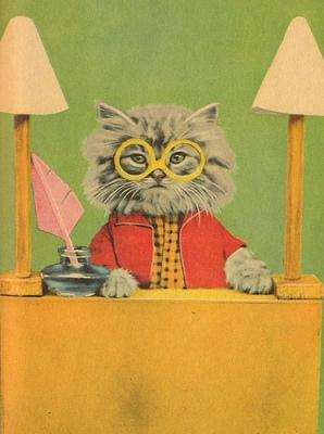 cat_sweater